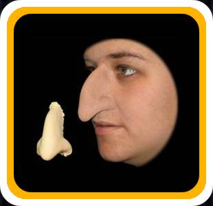 Prosthetic Witch nose